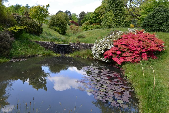High Beeches Garden: The Waterfall 1