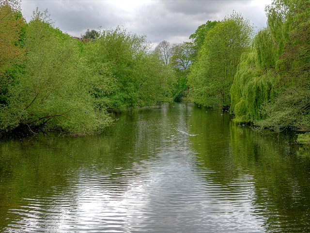 Peel's Cut, River Trent