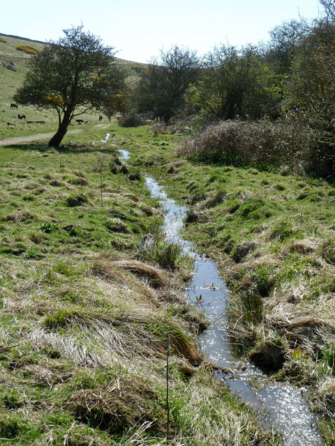 Stream, Seacombe Bottom