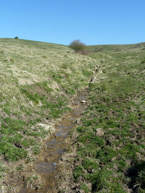 Tributary of stream in Seacombe Bottom