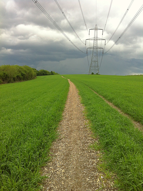 Footpath from Chalton to Buriton