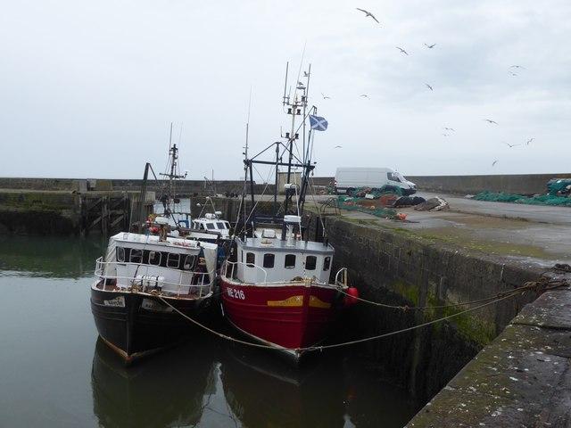 Prawn Trawlers, Gourdon