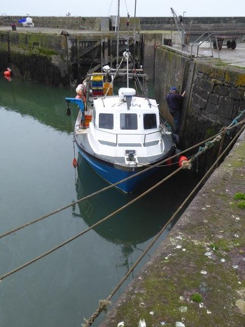 Creel boat , Gourdon Harbour