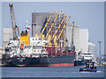 J3576 : Ships at Belfast by Rossographer