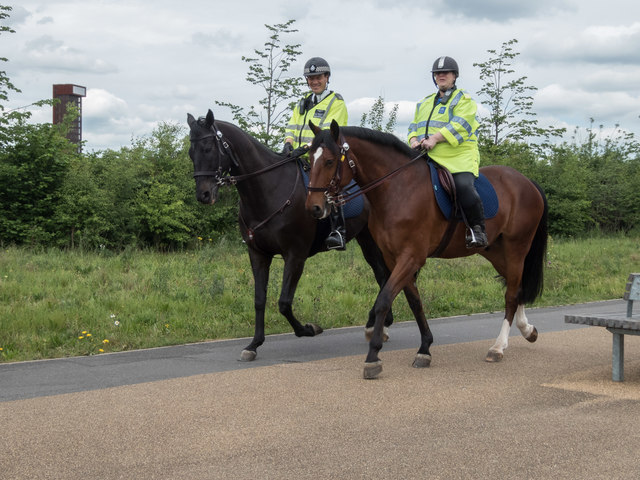 Mounted Police, Olympic Park, Stratford
