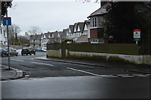 SX4555 : Nelson Avenue by N Chadwick