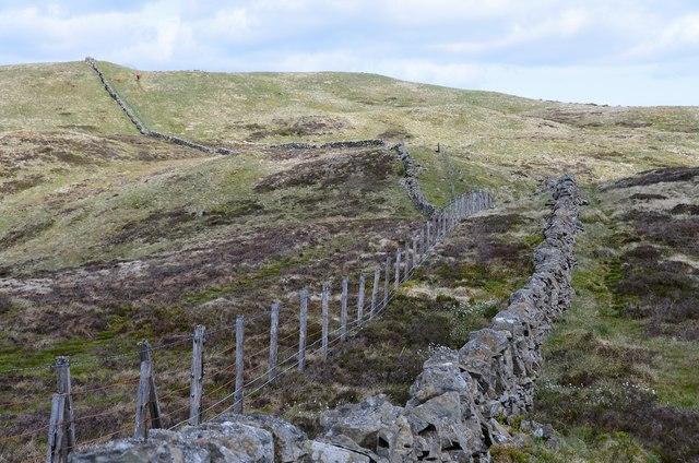 Wall and fence, Whiteyaud Head