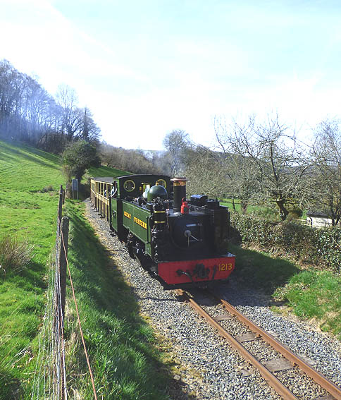 Vale of Rheidol loco 1213 slowing for the crossing at Nantyronen