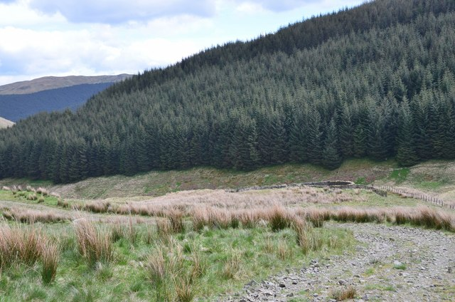 Track and sheepfold below Black Knowe Head