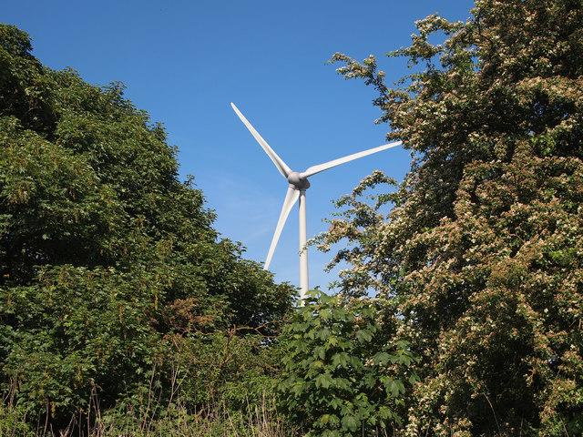 Wind Turbine east of Welton Water