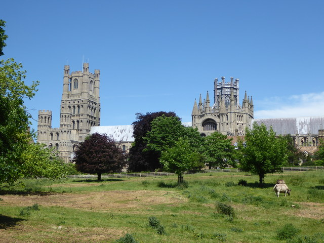 Ely Cathedral looking across The Park
