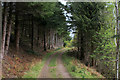 NH4317 : Great Glen Way in Creag nan Eun Forest (3) by Chris Heaton