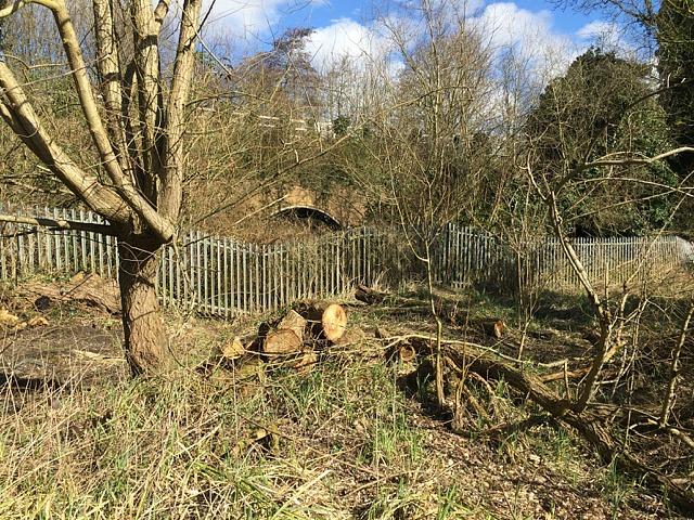 Scrub clearance by a railway fence, Brindley's Field, southeast Warwick