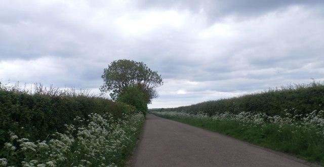 Lane near New Shoreston