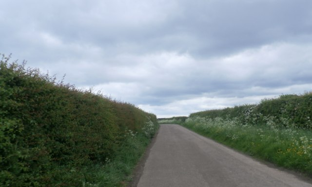The Lane from Glororum