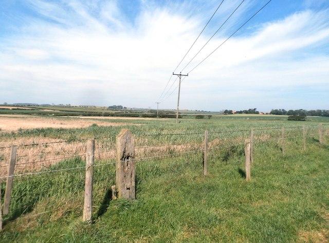 Fields near Westfield Farm