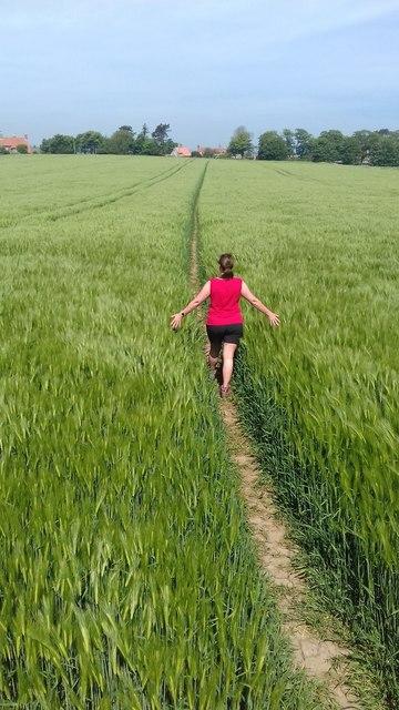 Walking through the barley