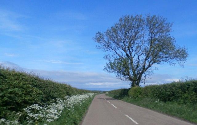 Country Lane near Smeafield
