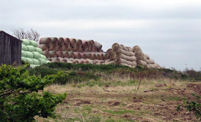 Pile of bales at Lodge Farm