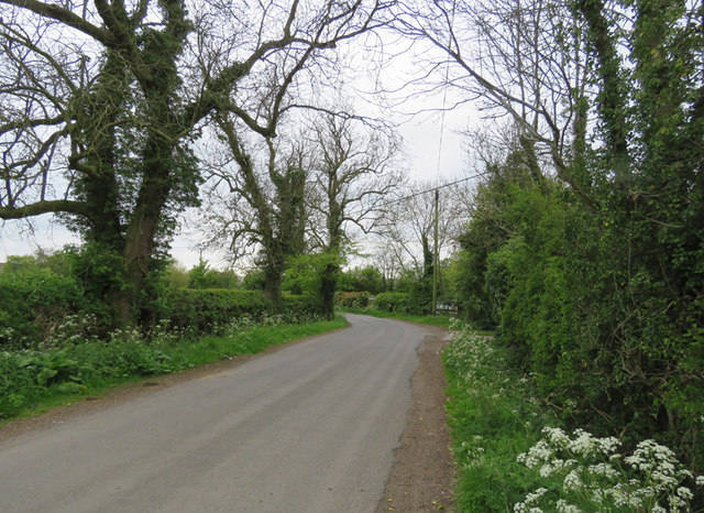 Dadlington Lane towards Dadlington