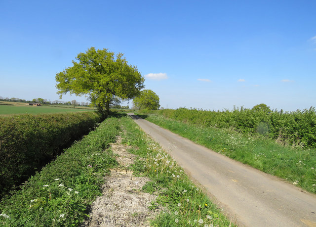 Green Lane towards Wibtoft