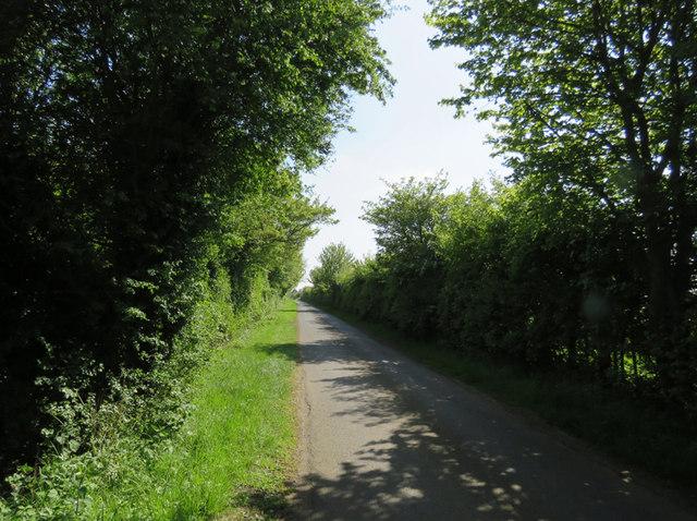 Main Street towards Willey