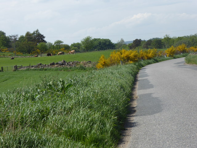 Bend in road near Lower Farmton