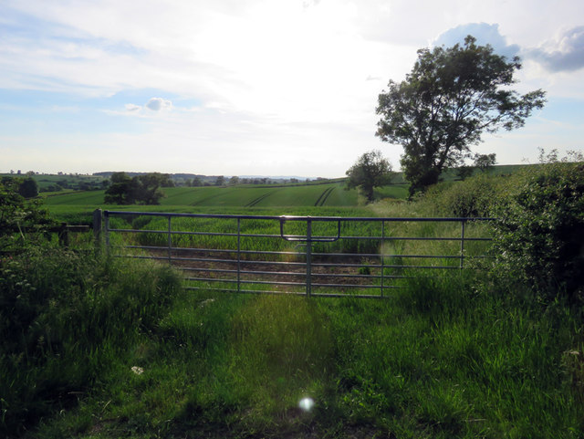 Entrace to field west of Baggrave Road