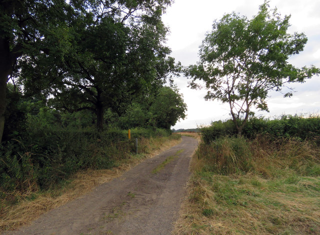 Track towards Saxelby Pastures