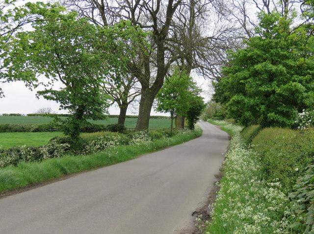 Knossington Road towards Somerby
