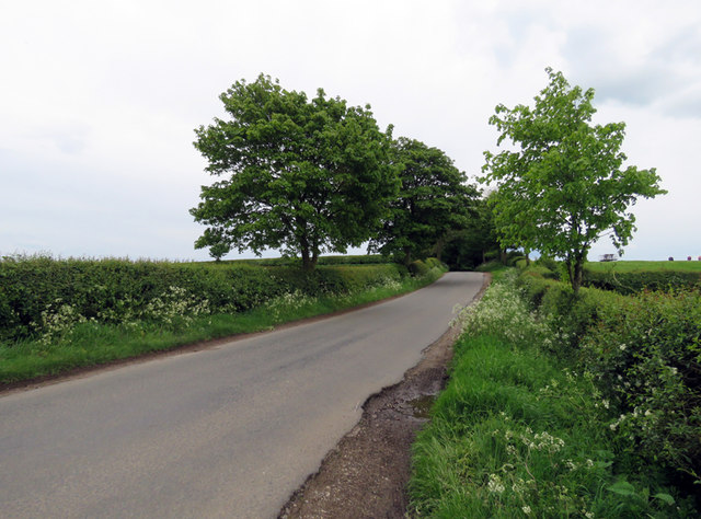 Somerby Road towards Knossington