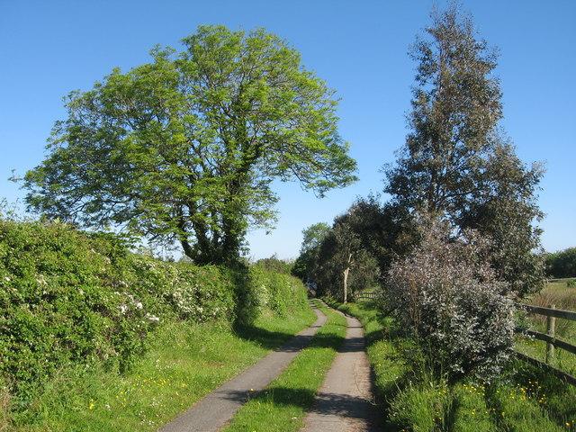 Footpath to Ty'n Graig
