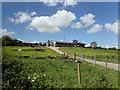 M0980 : Hilltop farm by Robert Ashby