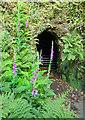 SX4269 : Mine Entrance at Danescombe Mine by Des Blenkinsopp