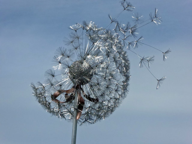 Stainless steel dandelion sculpture
