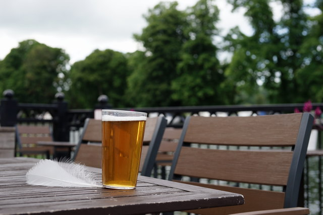 A Pint at the Swan
