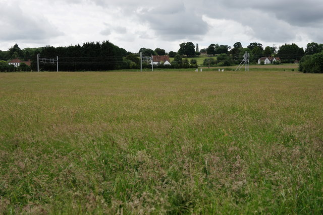 Field at Lower Basildon