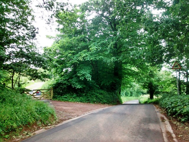 Minor road through Beacon Hill, near Pinhoe