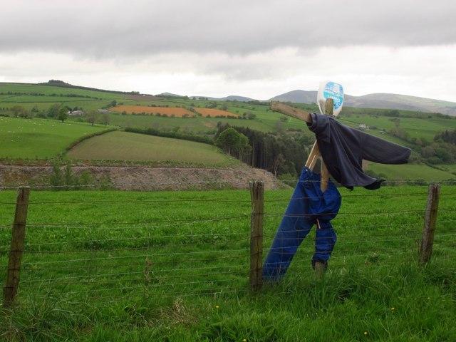 A solitary scarecrow
