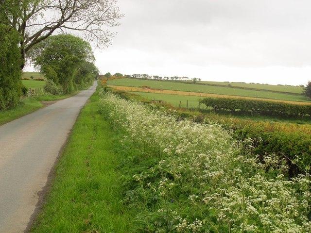 Road along the ridge above Glyn Ceiriog