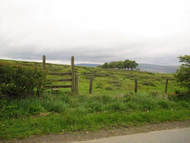Footpath to Llangollen