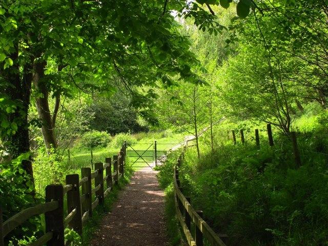 Path to Llantisilio
