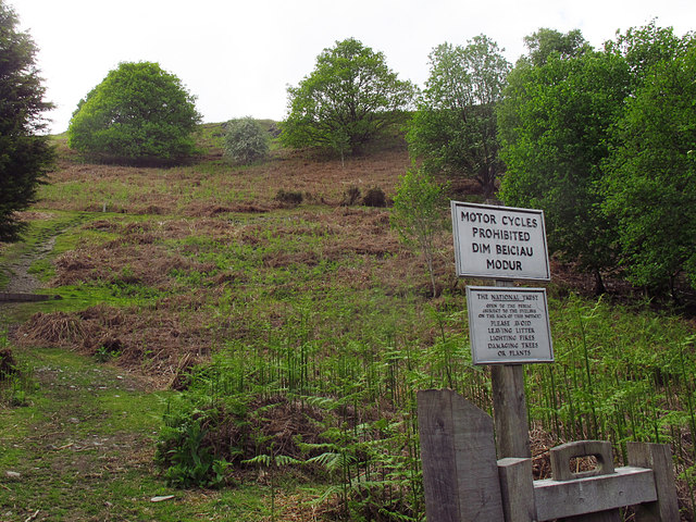 National Trust land at Coed Hyrddyn