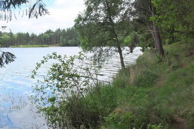 South bank of Edgelaw Reservoir