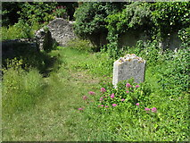 SY6971 : Remains of St Andrew's church, Portland by Gareth James