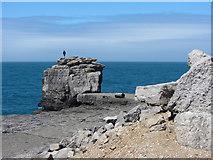 SY6768 : Pulpit Rock, Portland Bill by Gareth James