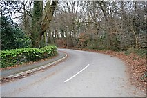 SX5061 : Bickleigh Down Rd by N Chadwick