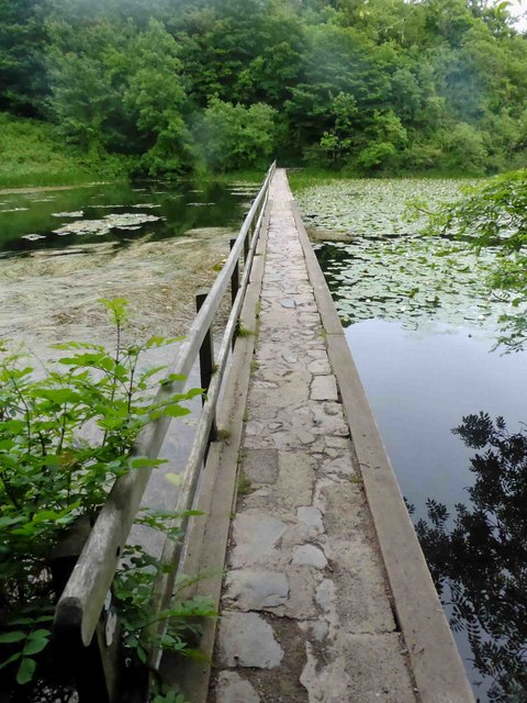 Bosherton pond lily lake footbridge
