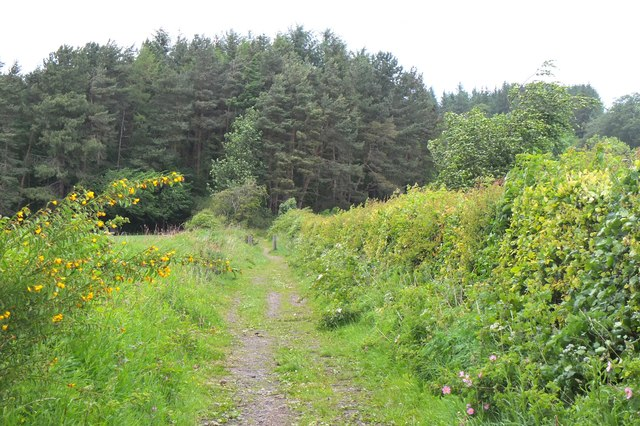 Footpath near Capielaw