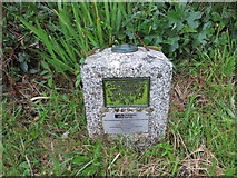 SW6637 : Ordnance Survey Fundamental Bench Mark - Troon by Peter Wood